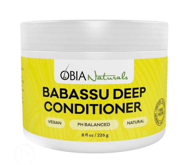 One of the best deep conditioners for high porosity hair is the Babassu Deep Conditioner from OBIA Naturals.