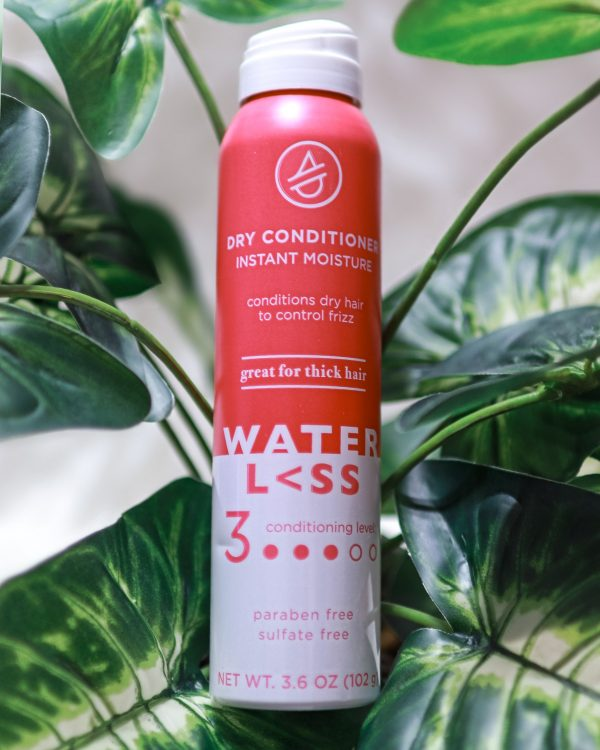 Dry Conditioner Instant Moisture from Waterless Hair Care