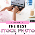 """A Pinterest graphic for the blog post """"The Best Paid Stock Photo Subscriptions for Bloggers"""" on NaturallyMadisen.com"""